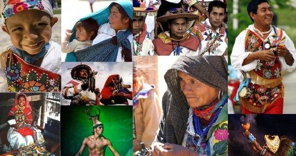 Diversidad mexicana