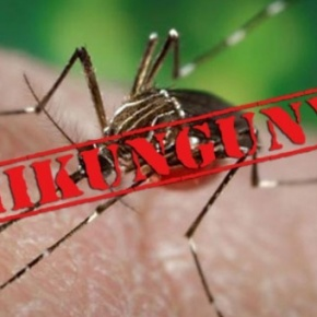 La Chikungunya: ¿Qué es? Lo que pasa y nodicen